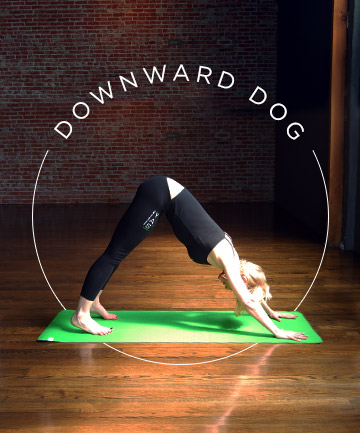 Yoga Pose No. 4: Downward Dog