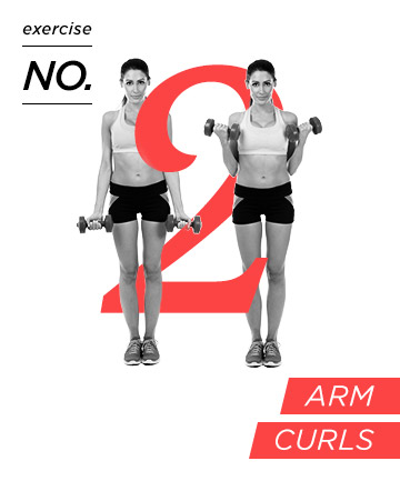 Arm exercise no. 2: Curls