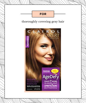 Best for: Eradicating Gray Hair, 8 Products to Get Salon-Worthy ...