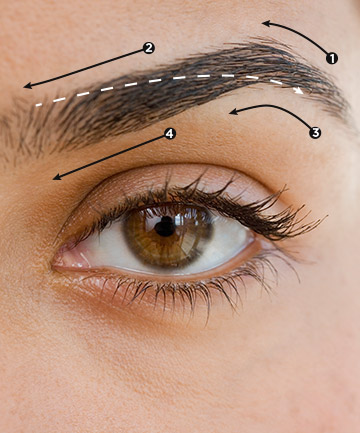 Work in Sections, Want to Wax Your Eyebrows at Home? Don't