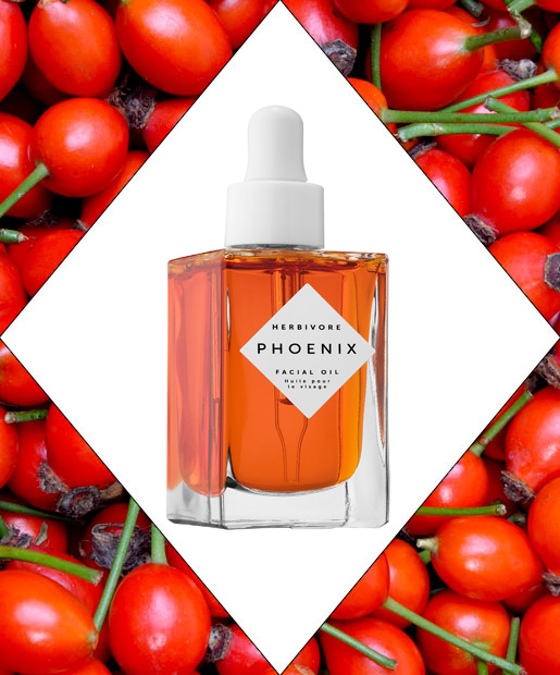 Rose Hip Seed Oil, 14 Best Face Oils For A Perfect