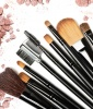 A Set of High-Quality Makeup Brushes