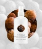 Best-Smelling Body Lotion No. 6: The Body Shop Coconut Milk Body Lotion