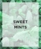 The Shade: Sweet Mint