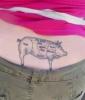 Swine Stamp