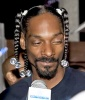 The Snoop Dogg Man Braid