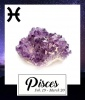 Pisces, Feb. 19 to March 20