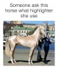 This Lit-from-within Horse