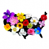 Find Your State Flower Perfume