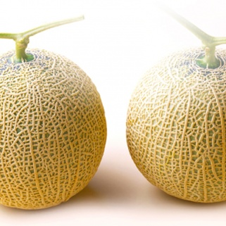Someone Actually Paid $15,000 for These Melons