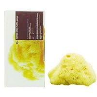 Korres Natural Products Body Sponge