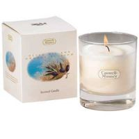 Caswell-Massey Olive Oil & Orange Blossom Scented Candle