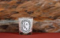Diptyque Scented Candle Woody Collection