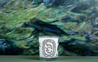 Diptyque Scented Candle Herbal Collection