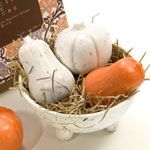 Gianna Rose Atelier Pumpkin & Squash in Footed Soap Dish