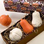 Gianna Rose Atelier Pumpkin & Squash Soaps in Slider Gift Box