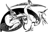 Black Phoenix Alchemy Laboratory Ars Draconis TANIN'IVER