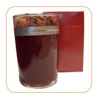 Shobha Madhu Fragrant Votive Candle