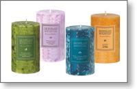 Archipelago Botanicals Excursion 2.5'' x 5 Pillar Candles