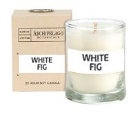 Archipelago Botanicals White Fig Votive Candle