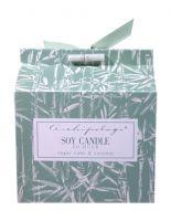 Archipelago Botanicals Sugar Cane & Coconut Boxed Candle