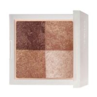 Clinique Shimmering Tones Powder Quad Limited Edition