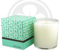 BURN FRESH Fresh Cucumber Melon Candle