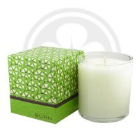 BURN FRESH Fresh Grass Candle