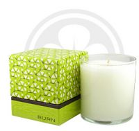 BURN FRESH Fresh Green Apple Candle