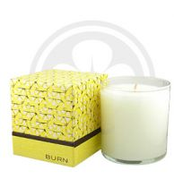 BURN FRESH Fresh Lemonade Candle