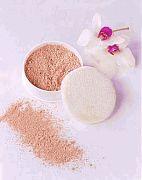 Chidoriya 'Kinuoshiroi' 100% Silk Powder