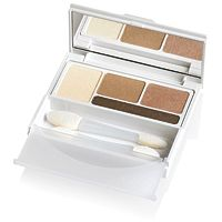 DHC Eye Shadow Perfect Pro