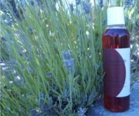 sumbody Potion #9 Massage Oil