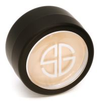 Studio Gear Hidden Agenda Concealer