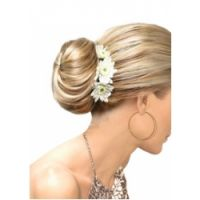 Easihair Elegance by easihair Hairpieces