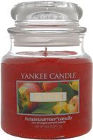 Yankee Candle Company Macintosh Housewarmer Jar Candle