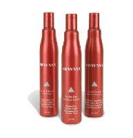 Pravana Color Ensure Leave-In Treatment
