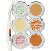 Hard Candy Nobody's Perfect Concealer