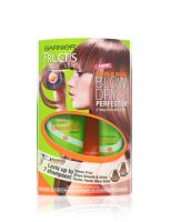 Garnier Fructis Sleek and Shine Blow Dry Perfector 2 Step Smoothing Kit