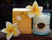 Ola Hawai'i Kukui Candle Sandalwood Verbena