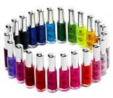 Shany Cosmetics Famous Colors Nail Polish Nail Art Set 1