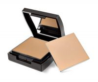 Mary Kay Endless Performance Creme-to-Powder Foundation